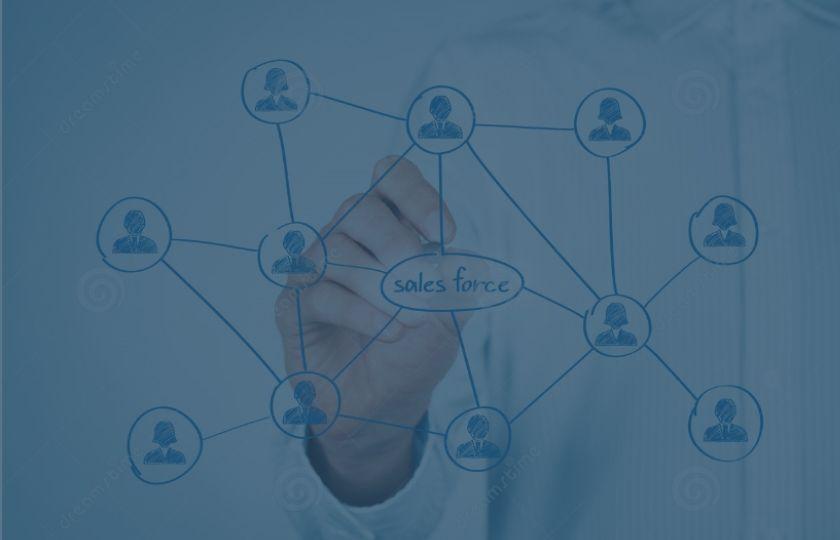 O que representam a equipas de Força de Vendas nas empresas?